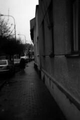Holga 120FN - Sidewalk (Kojotisko) Tags: street city people bw streets person holga czech streetphotography brno cc creativecommons czechrepublic streetphoto persons fomapan holga120fn