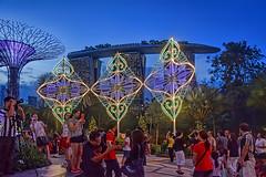 Luminarie Light Sculptures (chooyutshing) Tags: artwork singapore display marinabay baysouth gardensbythebay christmaswonderland supertreegrove luminarielightsculptures