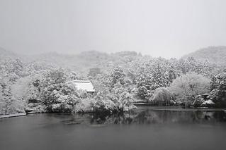 龍安寺 鏡容池雪の鏡容池 - 龍安寺 / Ryoan-ji Temple in Winter