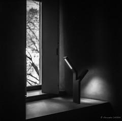 Lumires (Alexandre DAGAN) Tags: voyage mediumformat noiretblanc luxembourg chateau yashica argentique clervaux foma yashicamat124g fomapan moyenformat