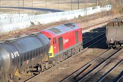 60010 (marcus.45111) Tags: train canon flickr diesel railway tug dslr fuel dbs doncaster 2014 flickruk class60 canoncameras 60010 1100d ukbuilt hatfieldandstainforth