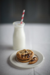 _MG_3899-3 (paulclancy1) Tags: gorillas chocolatechipcookies homemadecookies paulclancyphotography 600lbgorilla
