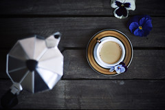 Morning moka (jakub.sulima) Tags: wood morning flowers blue light italy food brown white plant black cup nature coffee colors yellow silver studio table 50mm wooden flora nikon pretty day colours drink natur beverage may indoor pot nikkor caffeine moka d3200 ilatian
