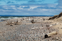 Michigan_North-0724.jpg (CitizenOfSeoul) Tags: usa beach sand michigan may greatlakes shore northamerica upperpeninsula lakesuperior whitefishpoint 2016