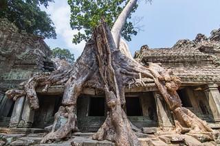 angkor - cambodge 2016 27