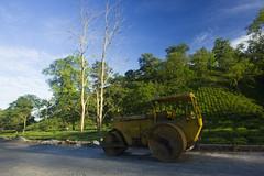 Paving New Roads (sanjeevbora) Tags: teaestate assamgreenfoliagenortheastindia