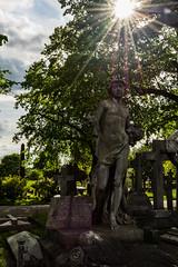 Angel (JB_1984) Tags: uk england sun london cemetery grave stone angel memorial unitedkingdom stonework tomb tombstone masonry gravestone sunburst westbrompton bromptoncemetery royalboroughofkensingtonandchelsea theroyalparks