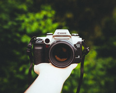 IMG_6618 (benroyals111) Tags: camera art film 35mm canon f14 85mm sigma eos50e elan2e vsco 5dmarkii 5dmkii vscofilm