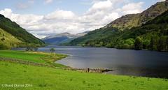 2016.01460a Loch Eck, Argyll, from the west side looking north, 24 May 2016. (jddorren08) Tags: scotland argyll dunoon cowalpeninsula locheck westernscotland scottishloch scotlandscountryside scotlandslandscape daviddorren sigma30mmf28 jddorren sonyalphaa6000 argyllscenery