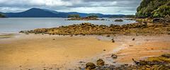 boulder bay at ulva island (NZ) 5 (Russell Scott Images) Tags: ulvaisland stewartisland newzealand boulderbay russellscottimages