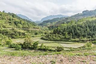 tam son - dong van - vietnam 12
