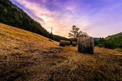 IMG_6752-Recuperato (Claudio Mugnaini) Tags: sunset summer italy home field canon landscape tramonto wide sigma hills 12mm paesaggio softlight grano 6d touscany manolibera campigno
