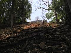 IMG_1972 (tomboy501) Tags: mexico maya guatemala mayanruins chiapas yaxchilan usumacintariver