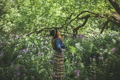 Alone (Louis Chiasson) Tags: seul alone wood forest fort marieve canon 5d 50mm lens fix prime bokeh green vert feuille alienbee einstein paulcbuff paul buff selens vagabond cybersync 120cm octobox octabox