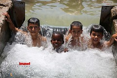Palestinians swim in a spring in Jericho (TeamPalestina) Tags: heritage photo photographer natural live palestine westbank ramallah innocent ramadan freepalestine photooftheday picoftheday palestinian occupation  issamalrimawi