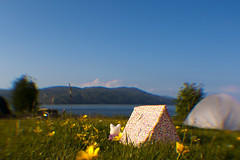 Camping on the Isle of Mull (iiisecondcreep) Tags: ocean flowers camping sea summer sun seascape mountains nature cat canon landscape toys island seaside innerhebrides wideangle isleofmull westcoast mull campsite waterscape sylvanianfamilies sylvanian craignure argyllbute shielings 70d lensbabycomposer tiffanygolightly seasidecamping
