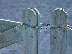 Fence gate chain (The Fotogrphr) Tags: door wood old brown black metal closeup illustration vintage fence silver private outdoors design wire rust gate key iron closed close lock antique metallic background steel object secret grunge rustic guard entrance rusty cage security dirty retro safety chain forbidden prison link strong barrier secure safe concept boundary protection padlock barbed vector isolated privacy element picket protect latch chained fencepost safeguard