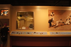 Cooperstown, NY (Carrie J. Bosch) Tags: new york ny museum ball hall teams team baseball display stadium bat fame player players cooperstown doubleday