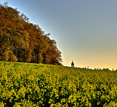 Yellow Feeling (W_von_S) Tags: church field yellow landscape bayern bavaria spring outdoor sony may feld kirche churchtower rape mai gelb paysage landschaft raps paesaggio werner frhling rapsfeld 2016 kirchturm rapefield ebersberg yellowfeeling wvons alpha7rm2