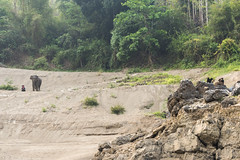 _RJS8183 (rjsnyc2) Tags: richardsilver richardsilverphoto richardsilverphotography nikon nikond810 d810 laos intrepidtravel asia mekong river mekongriver water travel travelphotographer travelphotography