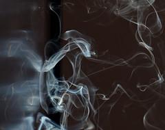 Alien ? (Seabird NZ) Tags: newzealand christchurch sunlight reflections smoke canterbury forms ghosts backlit incense weirdshapes sigma120300mmf28 nikond810a