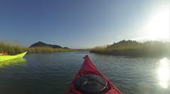 La Conner Kayaking-020 (RandomConnections) Tags: laconner skagitriver skagitriverestuary swinnomishchannel washington washingtonstate kayaking paddling unitedstates us