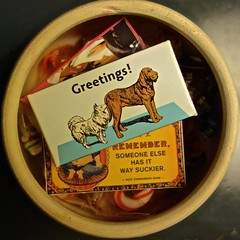 Greetings (ricko) Tags: dogs gum candy packages candyjar littledoglaughedstories
