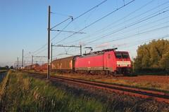 Oudewater, trein Hagen-Kijfhoek (Ahrend01) Tags: db cargo hagen chemie oudewater unit buizen staal kijfhoek wachtsporen