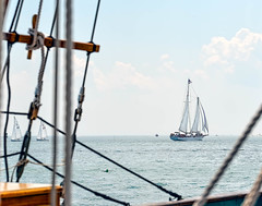 Great Day For A Sail (CapeCawder) Tags: gaffriggedschooner capecod usflag bayladyii provincetown americanflag sailboat capecawder