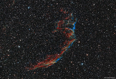The Eastern Veil Nebula (Supernova Remnant) (Martin_Heigan) Tags: veilnebula nebula supernova remnant w78 sharpless103 astronomy astrophysics astrograph telescope newtonian reflector celestron avx hydrogen deepsky dso space science physics canon 60da mhastrophoto widefield stars martin heigan astrophotography astroimaging southafrica astrometrydotnet:id=nova1663901 astrometrydotnet:status=solved ngc6995 ngc6992 ic1340 easternveil cygnusloop