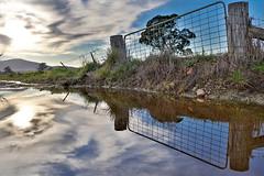 Reflection (Vinu Joy) Tags: refelection hdr