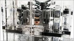 007 (HaeunDaddy) Tags: lego brick hobby batman catwoman selina kyle dark knight darkknight dc commics movie armor suit black creation custom figure mov moc afol
