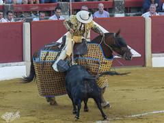 Fuerza (PRiC) Tags: caballo picador ubeda plaza toros albero arena peric pedro garcia tauromaquia