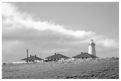 The Cape (mezuni) Tags: australia lighthouse kangarooisland southaustralia oceania willoughby au authenticki visitsa ki