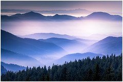 Field of Clouds (JakaPH Photography) Tags: landscape forest hill winter clouds cloudy fog tree mountain pohorje slovenia slovenija vast view europe outdoor colour color sky