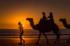 Hi mum, its Lawrence (jenni 101) Tags: australiansunset kimberleys broome cablebeach camels colourful outdoors sillohuettes sunset westernaustralia