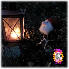 Tomte-Nisse (elf) (Villa Ylle) Tags: christmas felted finland gnome santas pixie made elf villa nordic jul tomte scandinavian tonttu nisse helper joulu pellinki pellinge ylle huovutettu tovad villaylle