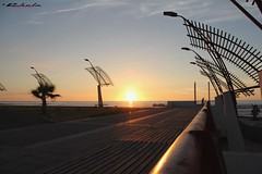 Lindo malecn (Chelo) Tags: chile naturaleza sol canon atardecer eos rebel mar agua paisaje sueos cielo nubes postal soledad 1855mm esperanza belleza calor malecn antofagasta tranquilidad ocano relajacin cielodespejado t2i