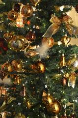 Golden tree [Nuremberg - 7 December 2014] (Doc. Ing.) Tags: christmas germany bayern bavaria gold market nuremberg christmasmarket christmastree christkindlesmarkt nürnberg 2014 mittelfranken middlefranconia käthewohlfahrt