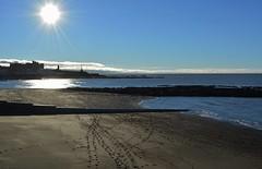DSC_0101 (stephanie.burgess98) Tags: sea beach wales sand footprints aberystwyth
