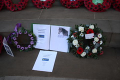Wreaths and drawings (The Donkey Sanctuary) Tags: animals memorial war donkeys poppies remembrance mules cornflowers