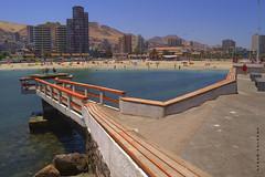 Un Chaputrón (Hellscream #22) Tags: chile antofagasta chileflickr