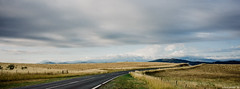 Road to somewhere (delayedflight) Tags: road morning sky panorama green cars field clouds landscape landscapes nikon soft traffic calming australia panoramic calm farmland hills clear coolpix canberra rolling circular cpl polariser coppinscrossing a