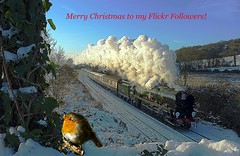 Christmas Fun (Deepgreen2009) Tags: christmas winter snow robin festive season fun steam wishes merry uksteam