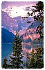 Lake Louise ~ purple mountain majesty - HSS! (karma (Karen)) Tags: trees canada mountains topf25 reflections lakes indigo pines alberta aviary lakelouise canadianrockies hss banffnp cmwdpurple canadanationalparks sliderssunday
