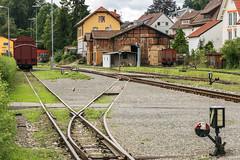 chsle-Bahn 009 (illertal-foto) Tags: old railroad train engine eisenbahn railway zug bahnhof trains steam trans bahn nostalgie locomotora dampflok gleis schwaben schwbisch alko dampf locomotiva ochsenhausen warthausen chsle rotum