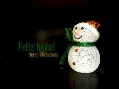 Feliz Natal! | Merry Christmas!