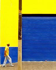 Que seria do amarelo ... (shumpei_sano_exp3) Tags: vivid golddragon colorphotoaward diamondclassphotographer theunforgettablepictures