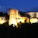 Alhambra Palace _6620