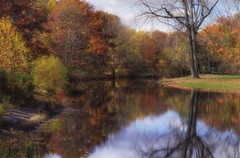 The Footbridge at Old Mine Park (Violet aka vbd) Tags: pentax k3 vbd smcpentaxda55300mmf458ed ct connecticut fall fallcolor autumn newengland park oldminepark trees reflection trumbull water bridge 2014 fall2014 footbridge composite painterly l ll landscape vista river foliage